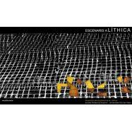 ESCENARIS A LITHICA. Proyectos de Arquitectura en Líthica