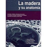 LA MADERA Y SU ANATOMIA