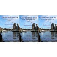 CALCULO DE ESTRUCTURAS CON LUSAS. Obra Completa 3 Tomos. Puentes y Obras de Edificación. Con Aplicaciones Prácticas