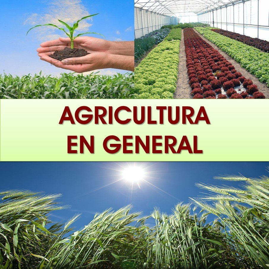 agricultura general
